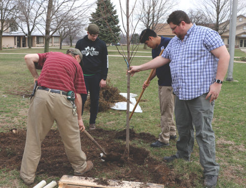 Thirteen Trees Planted: Class of 2018 Gift