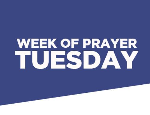 WOP – Tuesday